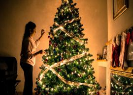 Christmas 2018- 5 Unknown Facts About Christmas Trees