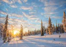 5 Weird Facts About Finland That Will Blow Your Mind