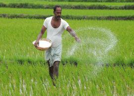 Karnataka wrote off loans worth Rs 1,611 crore borrowed by 3.28 lakh farmers till January 31