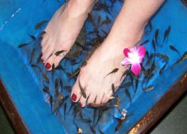 4 Amazing Benefits of Fish Pedicure