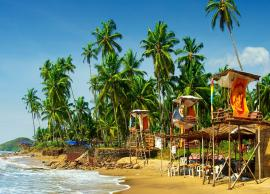 5 Things You Must Do in Goa