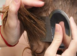 5 Home Remedies To Get Rid of Head Lice