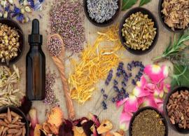 Struggling To Gain Weight? Here are 5 Herbs For You