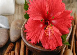 5 Ways To Use Hibiscus To Get Long and Shiny Hair