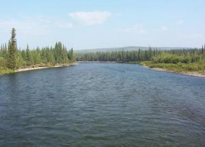Weird Story- The River That Holds Ample of Gold in It