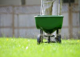 4 Common Ways To Fertilize Your Lawn
