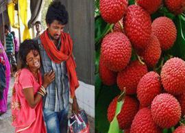 After encephalitis deaths, Odisha orders testing of litchi fruit