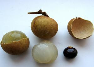 The Best Fruit to Treat Isomnia is Here. Read More Benefits