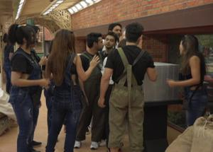 Bigg Boss 11 Old Friendship Put To Test With Luxury Budget Task