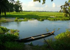 6 Things You Must Explore in Majuli- The River Island of India