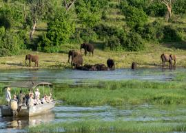 8 Must Visit National Park in Africa