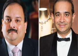 Nirav Modi & Mehul Choksi's firms withdraw pleas in HC
