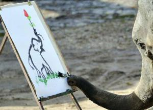 Video - This Painter Elephant is The New Artist in Demand