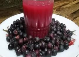 Recipe- Summers are Incomplete Without Phalse Sharbat