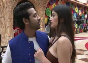 "Bigg Boss 11- ""Puneesh is The Strategy For Bandagi To Stay in House"", Vasu Kalra"