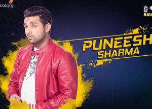 Bigg Boss 11 Everything You Need to Know About Puneesh Sharma