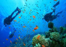 5 Amazing Scuba Diving Spots Not To Miss in India