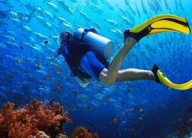 5 Best Places To Enjoy Scuba Diving in the World