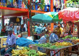 6 Things You Can Buy Only in Seychelles