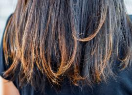 12 Home Remedies To Treat Split Ends
