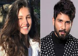 'SOTY 2' actress Tara Sutaria is no more part of Shahid Kapoor's Arjun Reddy remake