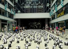 6 Amazing Things You Must Do in Hong Kong
