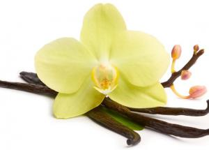 Vanilla Can be Your Skin and Hair Best Friend, Know How