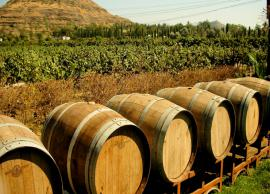 5 Most Amazing Vineyards To Explore in India