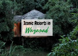 5 Iconic Resorts To Visit in Wayanad