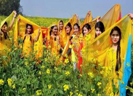 Vasant Panchami 2019- Why Wearing Yellow on This Day is Considered Auspicious