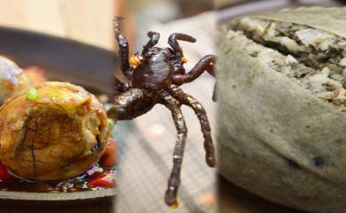 World's Most Creepiest Food