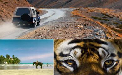 8 Overwhelming Safari Holidays in India