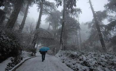 5 Dazzling Snowfall Experience in India