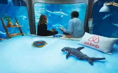 5 Aquariums Worth a Night Out with Sharks