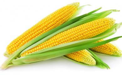 Corn Helps in Improving Skin Texture. Read More for Other