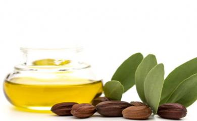 Jojoba Oil is The Best Remedy For All You Hair