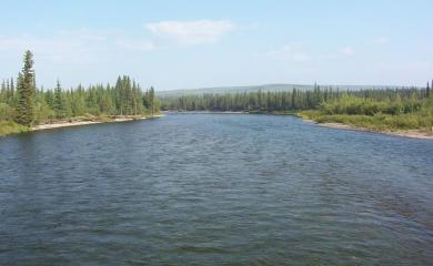 Weird Story- The River That Holds Ample of Gold in
