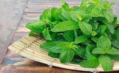 9 Mint Face Packs For Glowing Skin