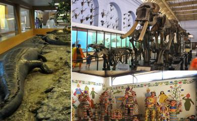 7 Museums in India that Children Too Will Love
