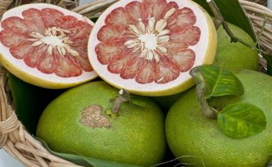 This Fruit is Very Useful To Treat Urinary Infection