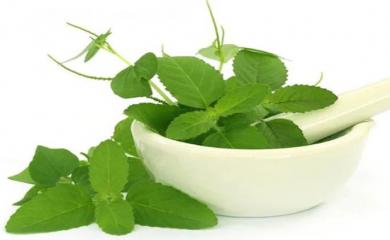 3 Ways To Use Tulsi Leaves in Face Pack