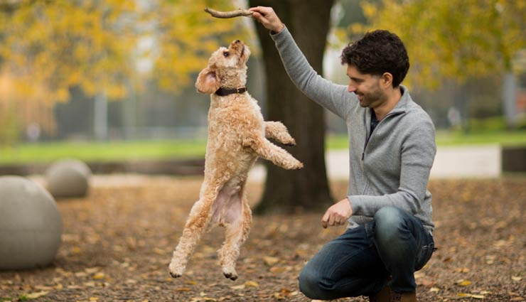 5 Reasons Pets Makes You Happy