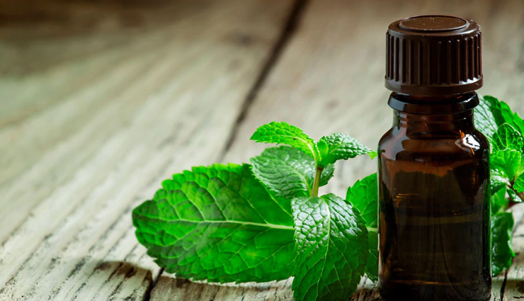 coconut oil,tea tree oil,apple cider vinegar,aloe vera,peppermint oil,onion juice,itchy scalp during monsoon,home remedies,home remedies to treat itchy scalp,hair care tips,beauty tips