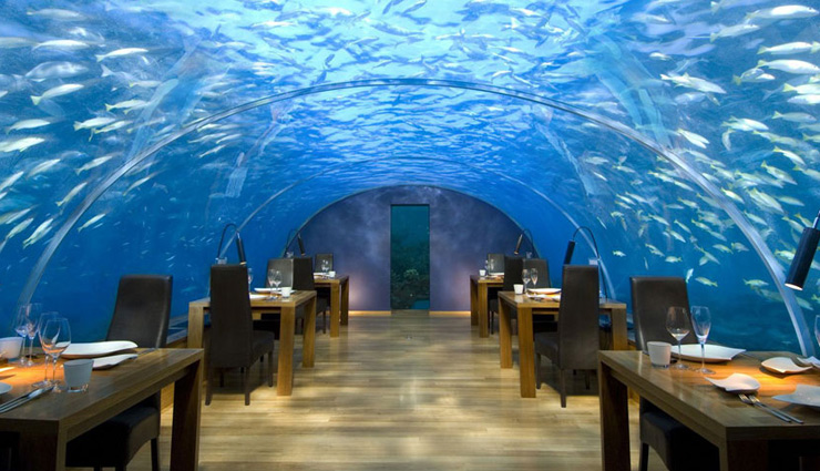 underwater hotels around the world,best underwater hotels,underwater hotels,utter inn hotel,sweden,lovers deep,olivers travels,ithaa undersea restaurant,maldives,per aquum niyama,maldives,jules undersea lodge,florida