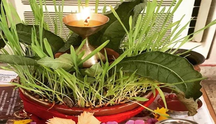 astrology tips,astrology tips in hindi,navratri 2020,durga pooja,importance of barley seeds ,ज्योतिष टिप्स, ज्योतिष टिप्स हिंदी में, नवरात्रि 2020, दुर्गा पूजा, नवरात्रि में जौ का महत्व