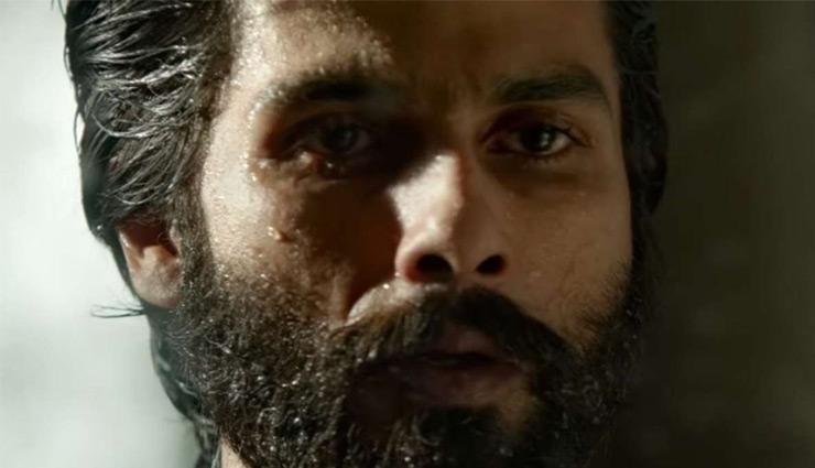 'कबीर सिंह' के कारोबार में गिरावट जारी, फिर भी शानदार है कारोबार