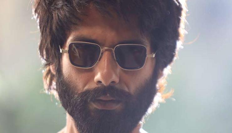 300 करोड़ मुश्किल में, 4थे सप्ताह में वर्ष की सबसे ज्यादा कमाई वाली फिल्म बनी 'कबीर सिंह'