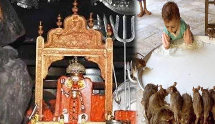 durga mata temple,famous temple,world famous temple,durga mata temple ,दुर्गा माता मंदिर, प्रसिद्ध मन्दिर, विश्वभर में प्रसिद्द देविमाता मंदिर, नैना देवी मंदिर, कामाख्या देवी मंदिर, करणी माता मंदिर, अधर देवी मंदिर, दुर्गा मंदिर