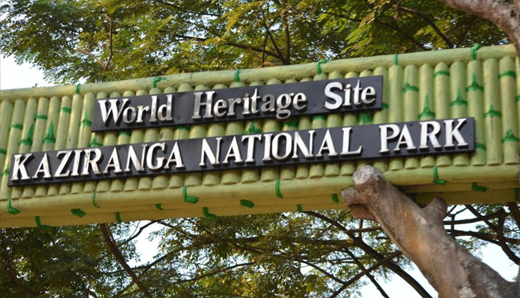 wildlife reserves to visit in india,reserves to visit in india,gir national park,kanha tiger reserve,sundarbans national park,mahatma gandhi marine national park,balpakram national park,kaziranga national park,travel,india travel,holidays,travel guide,india tourism