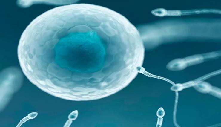 kyle gordy,sperm donor,world most popular sperm donor,weird person ,अनोखा व्यक्ति, स्पर्म डोनर, केली गॉर्डी, सुने का प्रसिद्द स्पर्म डोनर, स्पर्म डोनर, कैलिफोर्निया